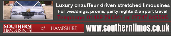 car hire / chauffeur driven
